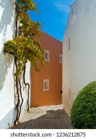 "cobblestone stairway lane leadings downhills through the houses of ""Alte"", Algarve,Portugal"