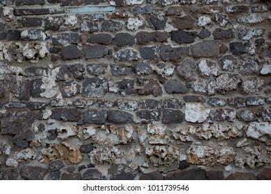 Cobblestone Wall made from Shell limestone