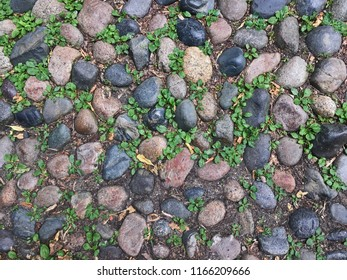 Cobblestones of Acorn Street, Boston, Massachusetts