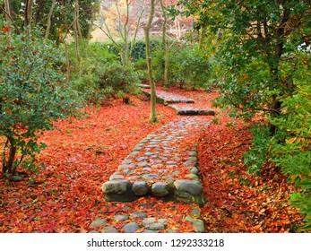 Cobblestones with fallen leaves Ikuta park Kawasaki Kanagawa,Japan