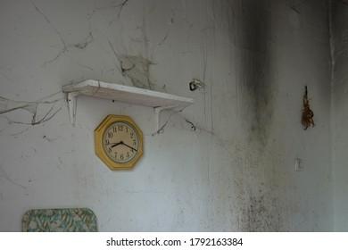 Cobwebbed clock and dried herbs on moldy wall. Abandoned house interior.