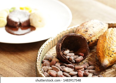 Cocao seed in dry shell and whole yellow fuite on bamboo tray. Chocolate lava cake with ice cream on white plate. Cocao tasty but bitter. Seeds is raw ingrediant of many kinds of sweet, drink, snack.
