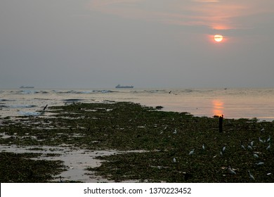 COCIN, KERALA, INDIA - NOVEMBER 1, 2018: Last light at Cochin (Kochi) sees the sun close to setting over the Arabian Sea, and the still waters that lap the shore of Cochin (Kochi) on the western coast