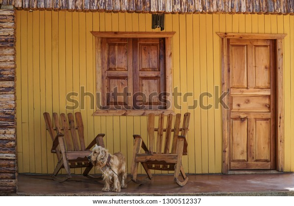 Cool Cocker Dog Wooden Rocking Chairs On Stock Photo Edit Now Squirreltailoven Fun Painted Chair Ideas Images Squirreltailovenorg
