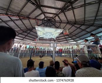 cockfighting arena in Bagac, Bataan, Philippines.  2019.