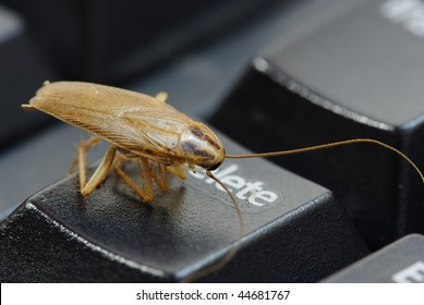 cockroach delete idea