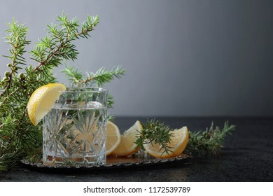 Cocktail gin , tonic with slices of lemon and a sprig of juniper . Copy space for your text.
