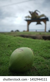 Cocnut and lobster.  Corn island in the Caribbean of nicaragua landscape. Latin America travel. Non edited photo. Vertical photography