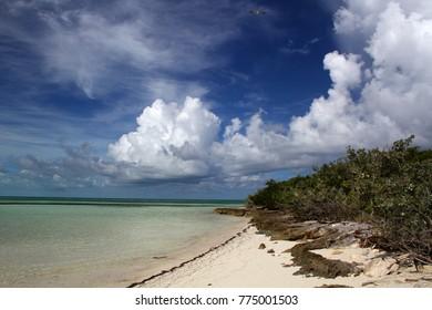 Coco Cay Island beach in the Bahamas.