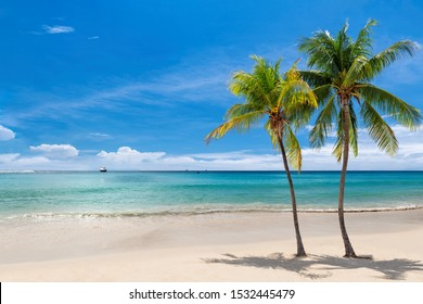 Coco palms on sunny beach and turquoise sea in Jamaica paradise island. Summer vacation and tropical beach concept.