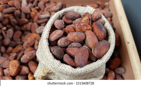 Cocoa bean seed (cacao) in sack and tray in the market for chocolate production. Cocoa beans agriculture is economic value  as in cultivation, harvesting, fermented, transportation and trading.