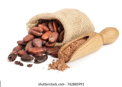 Cocoa beans in bag with cocoa powder in scoop isolated on white background
