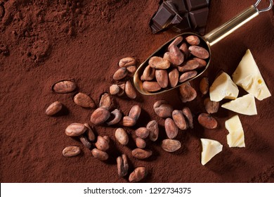 Cocoa beans, cocoa butter on cocoa powder background