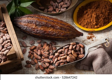 Cocoa beans and cocoa pod with cocoa powder on a wooden surface.