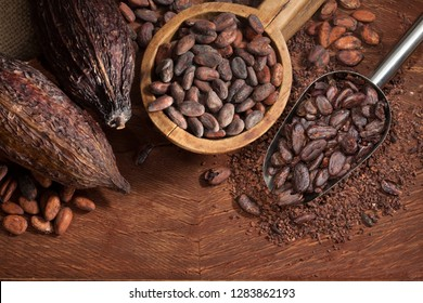 Cocoa beans pods and chocolate
