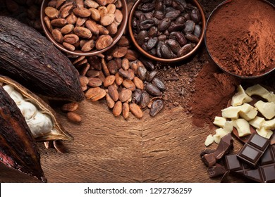 Cocoa beans pods, chocolate bar pieces, cocoa powder