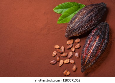 Cocoa beans and  pods on cocoa powder background