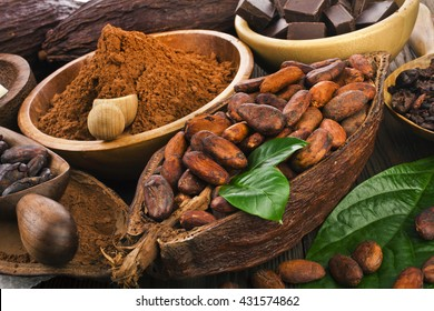 Cocoa beans and cocoa powder, cocoa butter and cacao nibs and chocolate on a wooden background