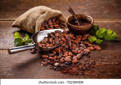 Cocoa concept with raw, peeled, and crushed Theobroma cacao cocoa beans