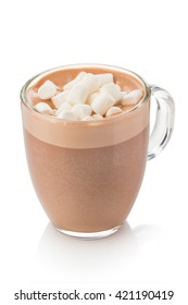 cocoa drink of hot chocolate milk. cocoa dusted marshmallow