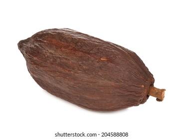 cocoa fruit isolated on white background