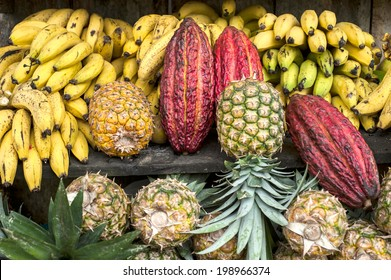 Cocoa fruit surrounded by other tropical fruits on the counter of the Latin America street market, Ecuador