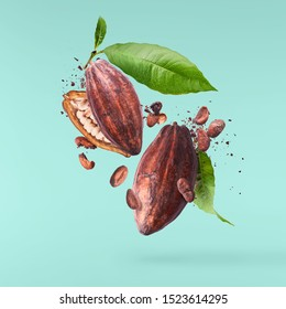 Cocoa pod fling in the air. Cracked and whole cocoa pod and beans levitate on turquoise background. High resolution image. Levitation concept.