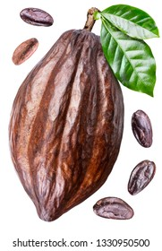 Cocoa pod with cocoa leaves and beans isolated on a white background. Clipping path.