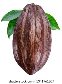Cocoa pod with cocoa leaves on a white background. Clipping path.