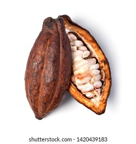 Cocoa pod on a isolated white background