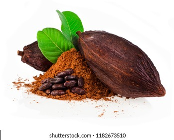 Cocoa pods and cocoa beans and cacao powder with green leaves isolated on white background