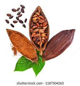 Cocoa pods, cocoa beans and cacao powder with green leaves isolated on white background. Top view.