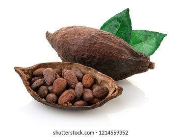 Cocoa pods and cocoa beans and cacao powder with leaves isolated on white background.