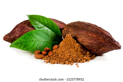 Cocoa pods and cocoa beans and cacao powder with green leaves isolated on a white background