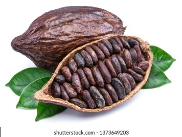 Cocoa pods and cocoa beans - chocolate basis isolated on a white background.