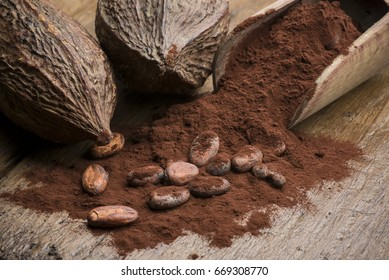 cocoa pods with cocoa beans and cocoa powder on wooden table