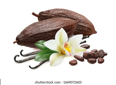 Cocoa pods, beans and vanilla flower isolated on white background. Package design element with clipping path. Full depth of field