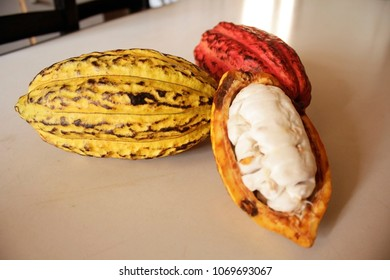 cocoa pods and pod cut in half on a table