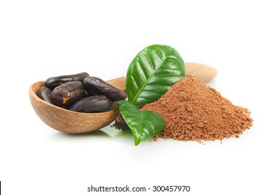 Cocoa powder and cocoa beans on white