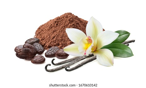 Cocoa powder, roasted beans and vanilla with flower isolated on white background. Package design element. Clipping path. Full depth of field