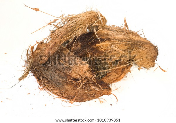Coconut Coir Mixed Plants Soil Substrate Stock Photo (Edit