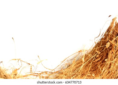 Coconut Coir or shell Isolated on White Background