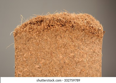 Coconut Coir (Used as Growing Medium or Soil Amendment) Close-Up