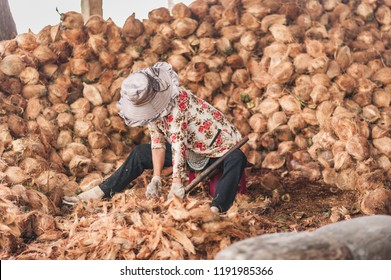 Coconut flesh being extracted from the shells by female workers. Details of a coconut candy workshop, one of the popular industries in Mekong River Delta, Vietnam.