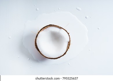 coconut fruit abstract in white watercolor on white background. freeform shape around sliced object. top view.