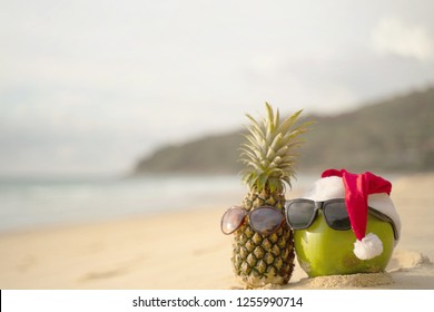 Coconut Holiday  with glasses and Santa Claus hat and pineapple,Concept Christmas on the beach Tropical design made in Phuket, Thailand.
