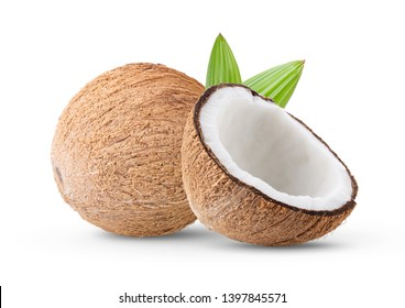 coconut isolated on white background. full depth of field