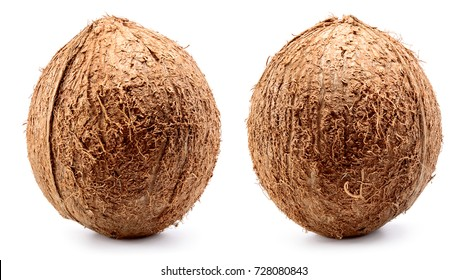 Coconut. Coconut isolated on white background. Full depth of field.