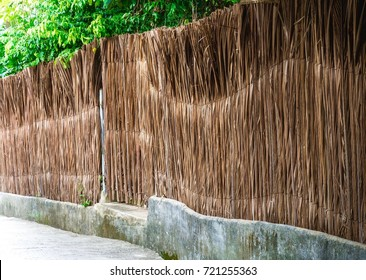 Coconut Leaves Wall Design