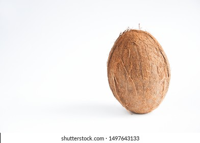 coconut lies on a table on a white background.